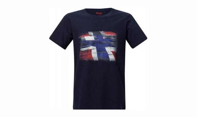 Футболка Bergans Norway Tee